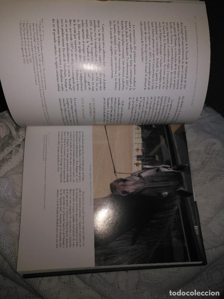 Libros de segunda mano: TRADICIÓN Y MODERNIDAD. HISTORIA COLEGIO OFICIAL DE VETERINARIOS CÁDIZ caballos cerdos burros perro - Foto 14 - 108432063