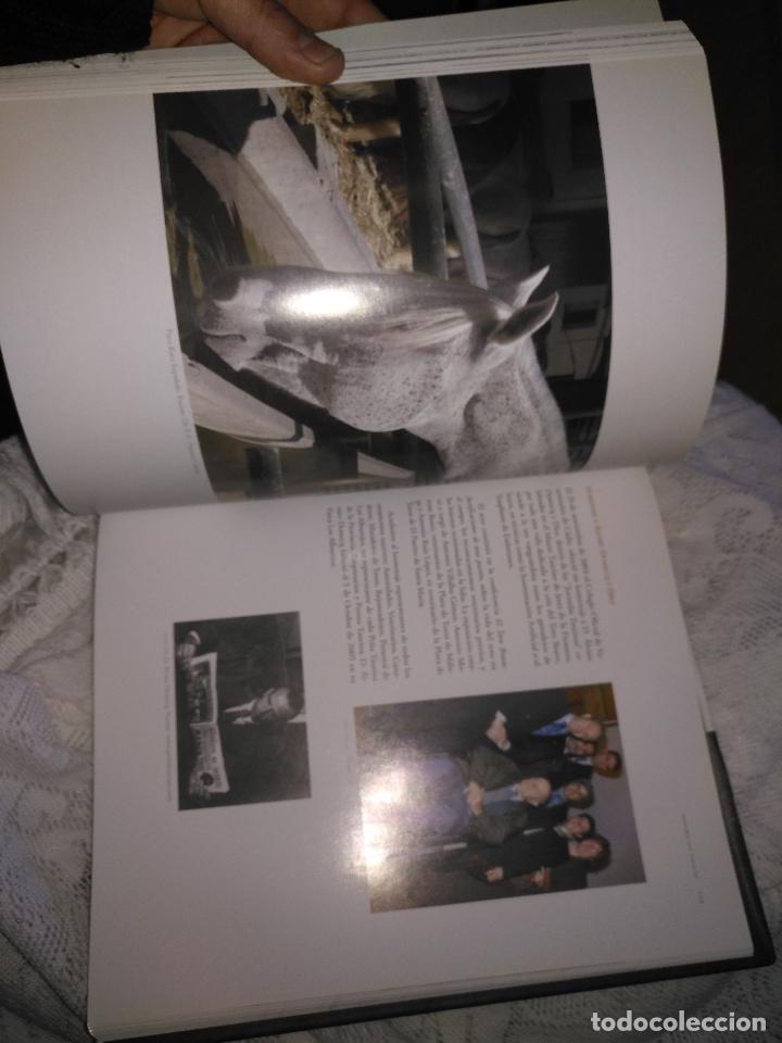 Libros de segunda mano: TRADICIÓN Y MODERNIDAD. HISTORIA COLEGIO OFICIAL DE VETERINARIOS CÁDIZ caballos cerdos burros perro - Foto 15 - 108432063
