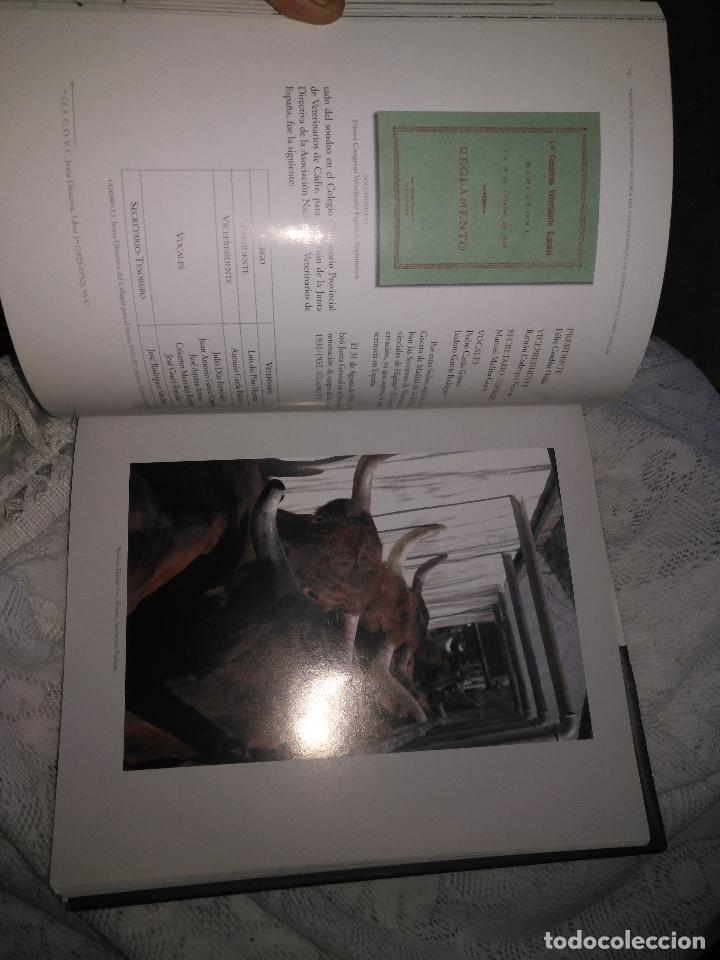 Libros de segunda mano: TRADICIÓN Y MODERNIDAD. HISTORIA COLEGIO OFICIAL DE VETERINARIOS CÁDIZ caballos cerdos burros perro - Foto 17 - 108432063