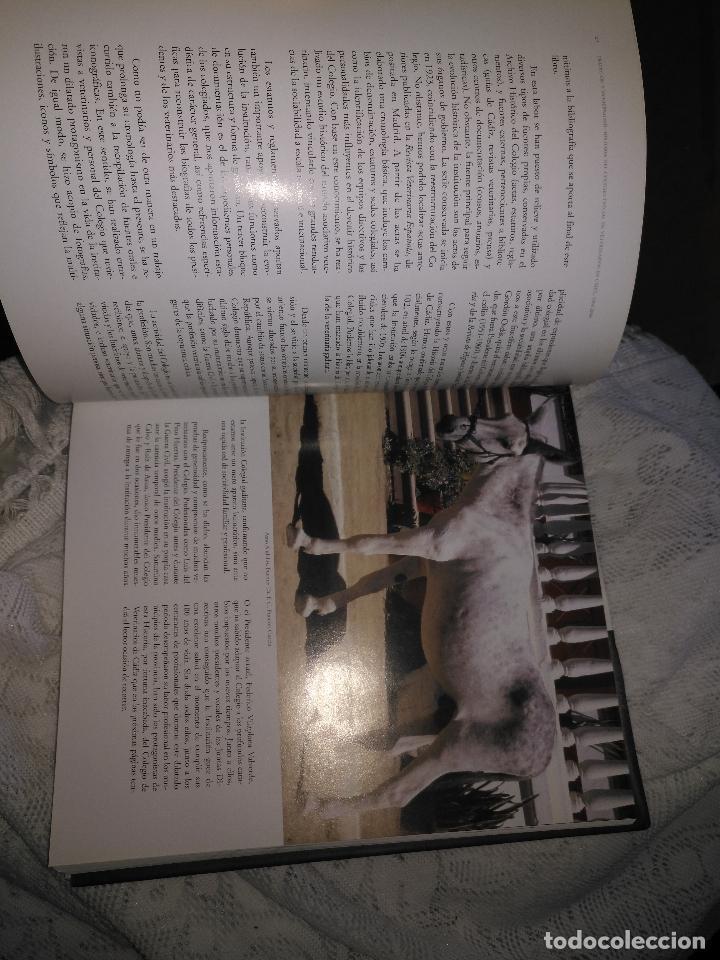 Libros de segunda mano: TRADICIÓN Y MODERNIDAD. HISTORIA COLEGIO OFICIAL DE VETERINARIOS CÁDIZ caballos cerdos burros perro - Foto 19 - 108432063