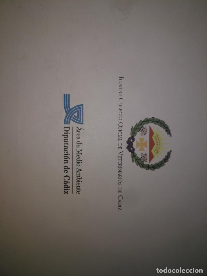 Libros de segunda mano: TRADICIÓN Y MODERNIDAD. HISTORIA COLEGIO OFICIAL DE VETERINARIOS CÁDIZ caballos cerdos burros perro - Foto 20 - 108432063