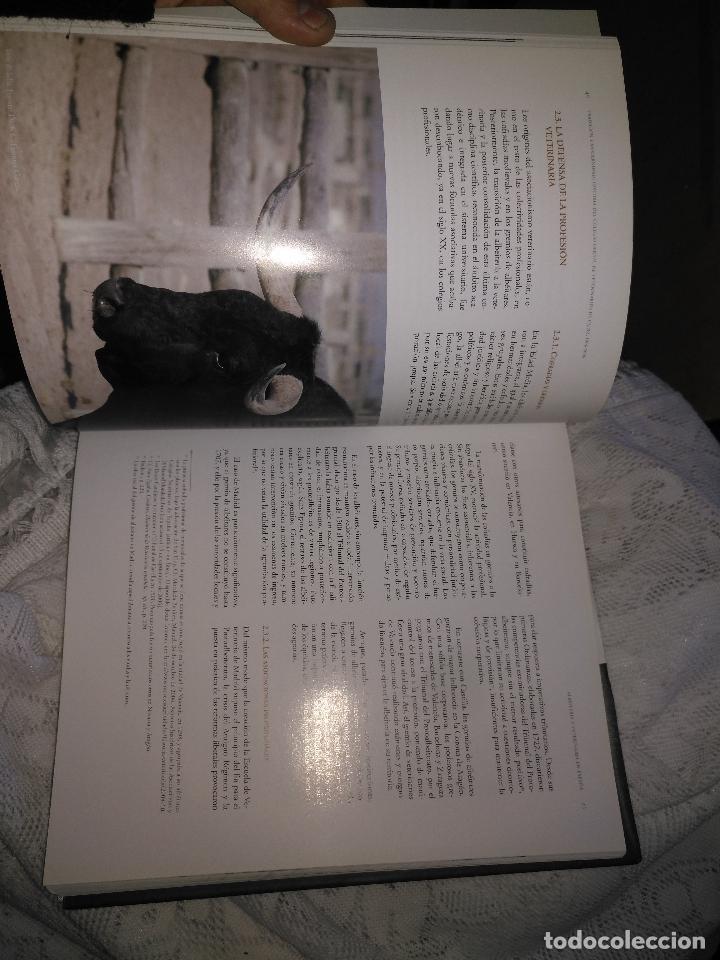 Libros de segunda mano: TRADICIÓN Y MODERNIDAD. HISTORIA COLEGIO OFICIAL DE VETERINARIOS CÁDIZ caballos cerdos burros perro - Foto 21 - 108432063