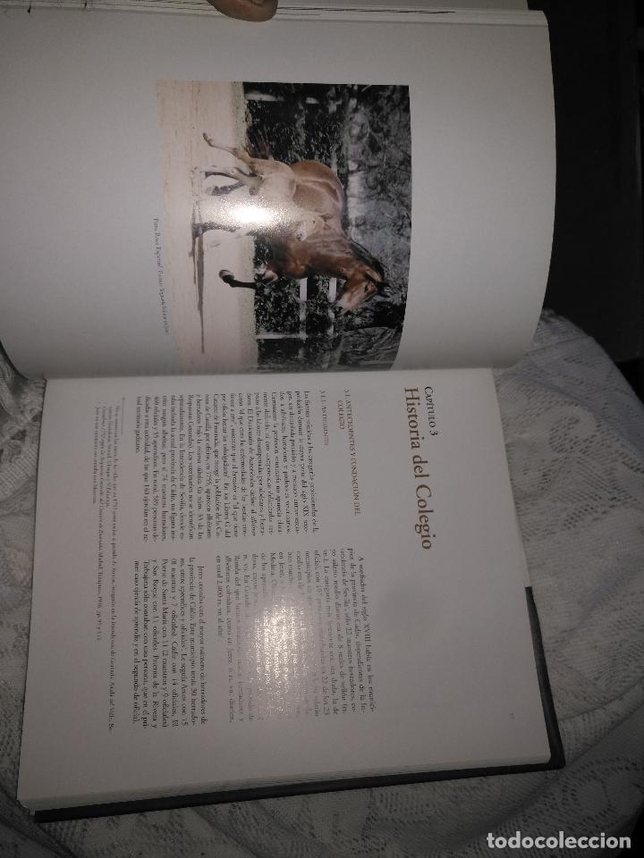 Libros de segunda mano: TRADICIÓN Y MODERNIDAD. HISTORIA COLEGIO OFICIAL DE VETERINARIOS CÁDIZ caballos cerdos burros perro - Foto 22 - 108432063