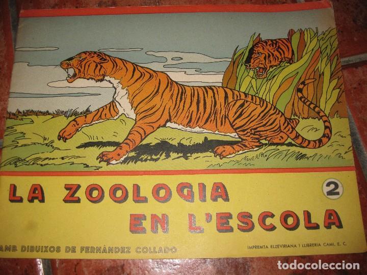 CUENTO PARA PINTAR Y CALIGRAFIA . LA ZOOLOGIA EN L'ESCOLA 2 . GRAN FORMATO HISTORIA NATURAL (Libros de Segunda Mano - Literatura Infantil y Juvenil - Otros)