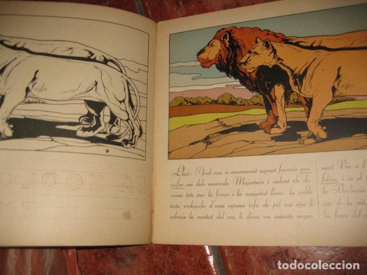 Libros de segunda mano: cuento para pintar y caligrafia . la zoologia en lescola 2 . gran formato historia natural - Foto 2 - 110027291