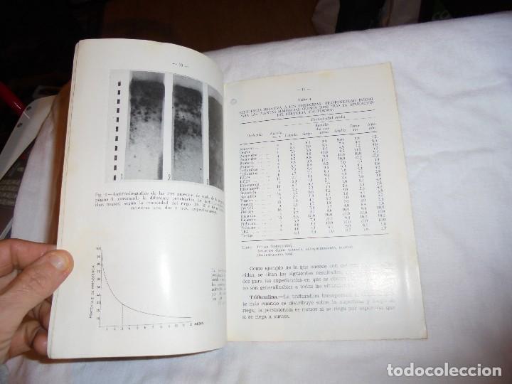 Libros de segunda mano: HOJAS DIVULGADORAS.ACUMULACION DE PESTICIDAS EN EL SUELO.FERNANDO BESNIER ROMERO.-1974 - Foto 3 - 110485951
