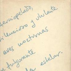 Libros de segunda mano: DAVID, ESCRITOS DE DAVID FERNÁNDEZ MIRÓ SEGUIDOS DE UN HOMENAJE DE SUS AMIGOS BROSSA, VILA-MATAS,ETC. Lote 110718915