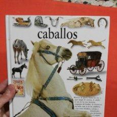 Libros de segunda mano: LIBRO CABALLOS TAPA DURA MUCHAS FOTOS. Lote 111396083