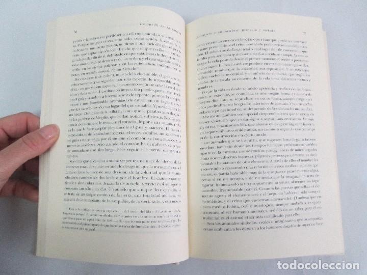 Libros de segunda mano: MARIA ZAMBRANO. 4 LIBROS: LA RAZON EN LA SOMBRA. FILOSOFIA Y POESIA. PERSONA Y DEMOCRACIA... - Foto 42 - 111587059