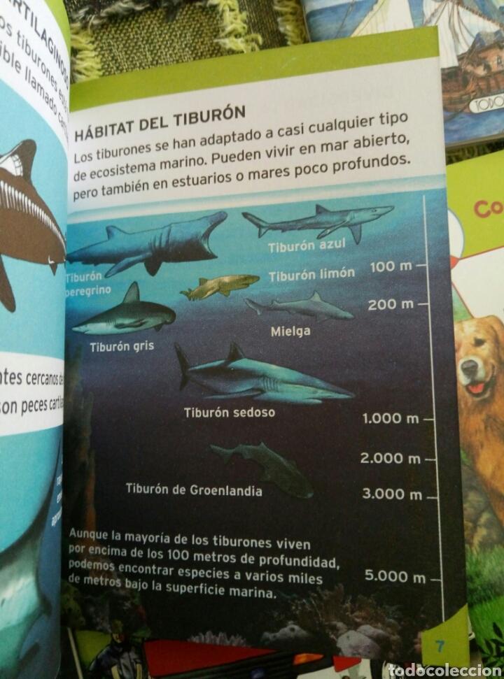 Libros de segunda mano: Colección Conoce tu mundo (6 pequeños libros)tiburones bomberos piratas informatica perros coches - Foto 2 - 112035130