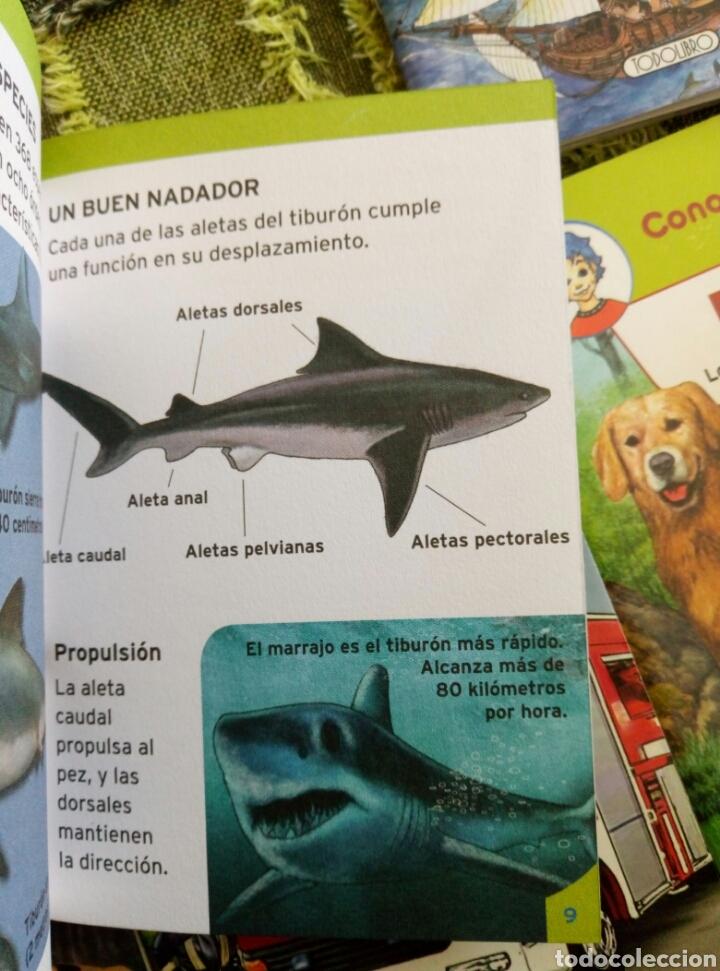 Libros de segunda mano: Colección Conoce tu mundo (6 pequeños libros)tiburones bomberos piratas informatica perros coches - Foto 3 - 112035130