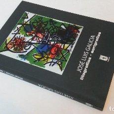 Libros de segunda mano: 2007 - JOSÉ LUIS GALICIA - LITOGRAFÍAS, SERIGRAFÍAS. Lote 112651071