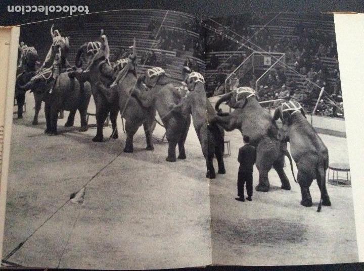 Libros de segunda mano: El circo por dentro Sebastián Gasch Ramón Dimas. Destino 1ª Ed. 1961 - Foto 2 - 114602083