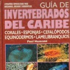 Livros em segunda mão: GUIA DE INVERTEBRADOS DEL CARIBE. HUMANN, PAUL. AYP-122. Lote 191962292