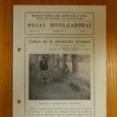 Libros de segunda mano: HOJAS DIVULGADORAS MINISTERIO AGRICULTURA - 1935 Nº 2 - AÑO XXIV - CULTIVO REMOLACHA FORRAJERA. Lote 114796523