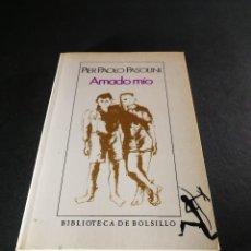 Libros de segunda mano: AMADO MIO, PIER PAOLO PASOLINI, SEIX BARRAL, 1990, 209 PG. LITERATURA NOVELA RELACIONES.. Lote 115193067