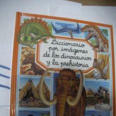 Libros de segunda mano: DICCIONARIO POR IMAGENES DE LOS DINOSAURIOS Y LA PREHISTORIA. Lote 116133559