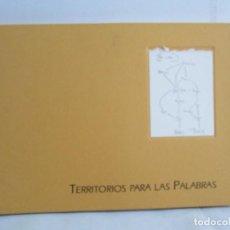 Libros de segunda mano: TERRITORIOS PARA LAS PALABRAS. TEXTO JON LANDABURU. IMAGENES GUSTAVO ZALAMEA. COLECCION LANZA DE ORO. Lote 116149075