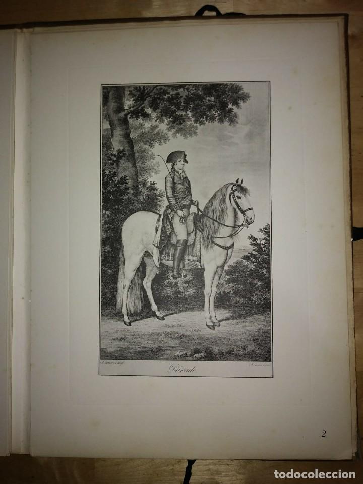 Libros de segunda mano: REAL PICADERO: Láminas de equitación grabadas en el siglo XVIII - hípica - caballos - equitación - Foto 25 - 117618115