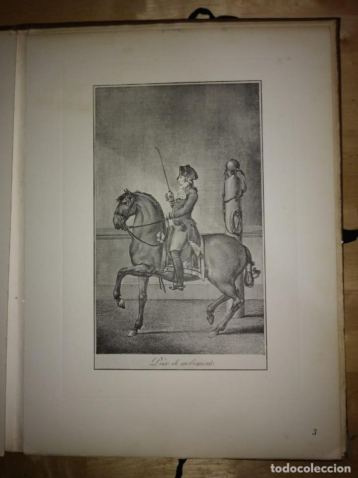 Libros de segunda mano: REAL PICADERO: Láminas de equitación grabadas en el siglo XVIII - hípica - caballos - equitación - Foto 26 - 117618115