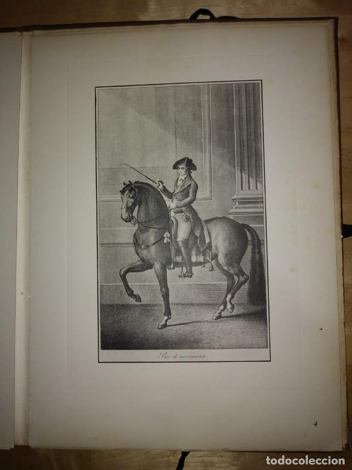 Libros de segunda mano: REAL PICADERO: Láminas de equitación grabadas en el siglo XVIII - hípica - caballos - equitación - Foto 27 - 117618115