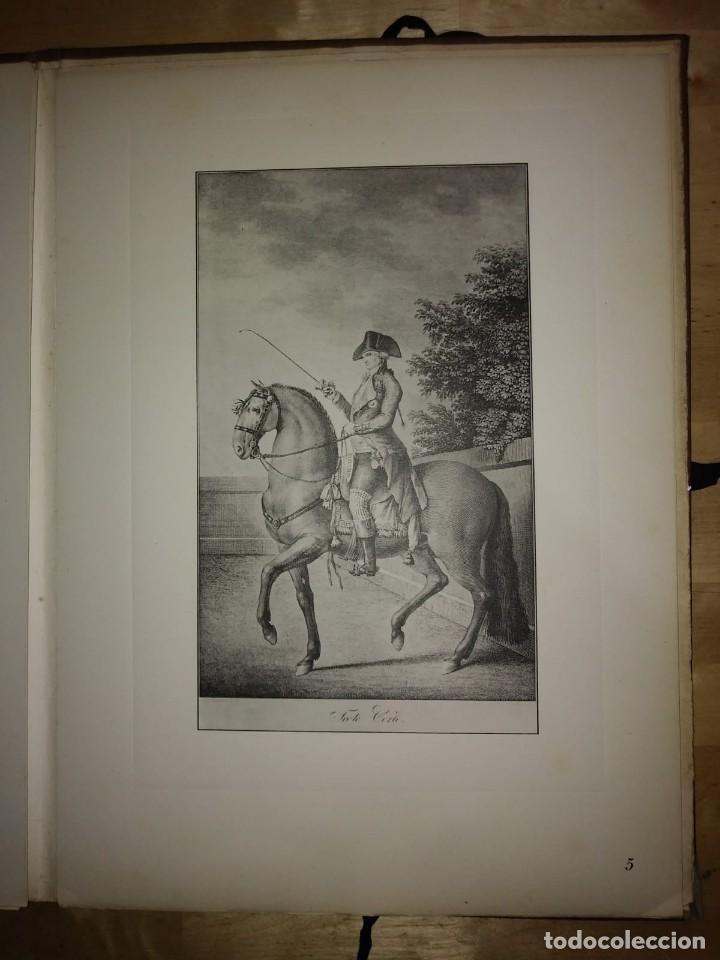 Libros de segunda mano: REAL PICADERO: Láminas de equitación grabadas en el siglo XVIII - hípica - caballos - equitación - Foto 28 - 117618115