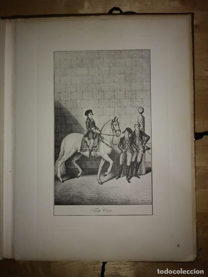 Libros de segunda mano: REAL PICADERO: Láminas de equitación grabadas en el siglo XVIII - hípica - caballos - equitación - Foto 29 - 117618115