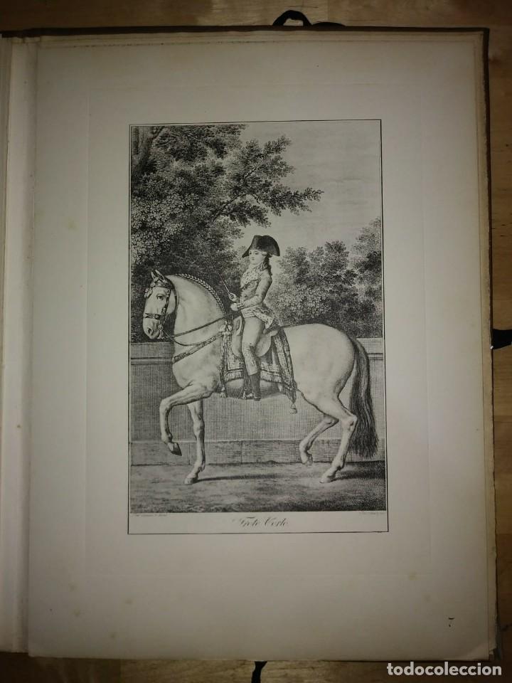Libros de segunda mano: REAL PICADERO: Láminas de equitación grabadas en el siglo XVIII - hípica - caballos - equitación - Foto 30 - 117618115