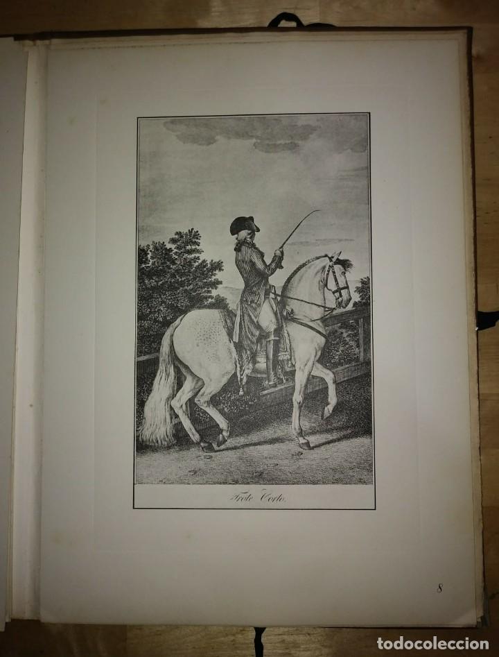 Libros de segunda mano: REAL PICADERO: Láminas de equitación grabadas en el siglo XVIII - hípica - caballos - equitación - Foto 31 - 117618115