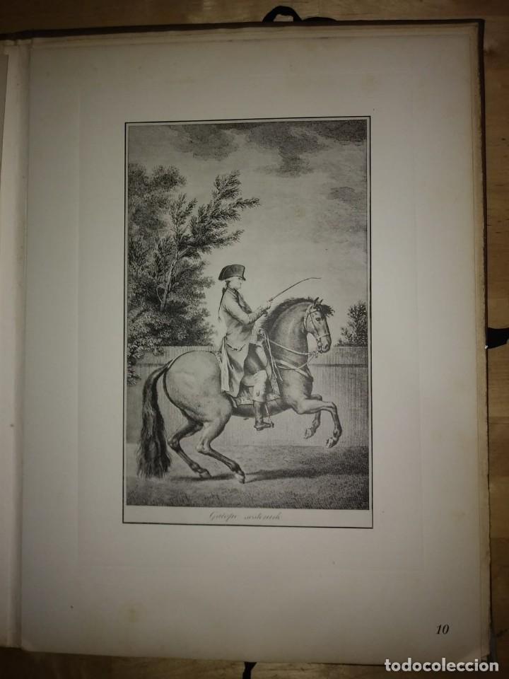 Libros de segunda mano: REAL PICADERO: Láminas de equitación grabadas en el siglo XVIII - hípica - caballos - equitación - Foto 33 - 117618115