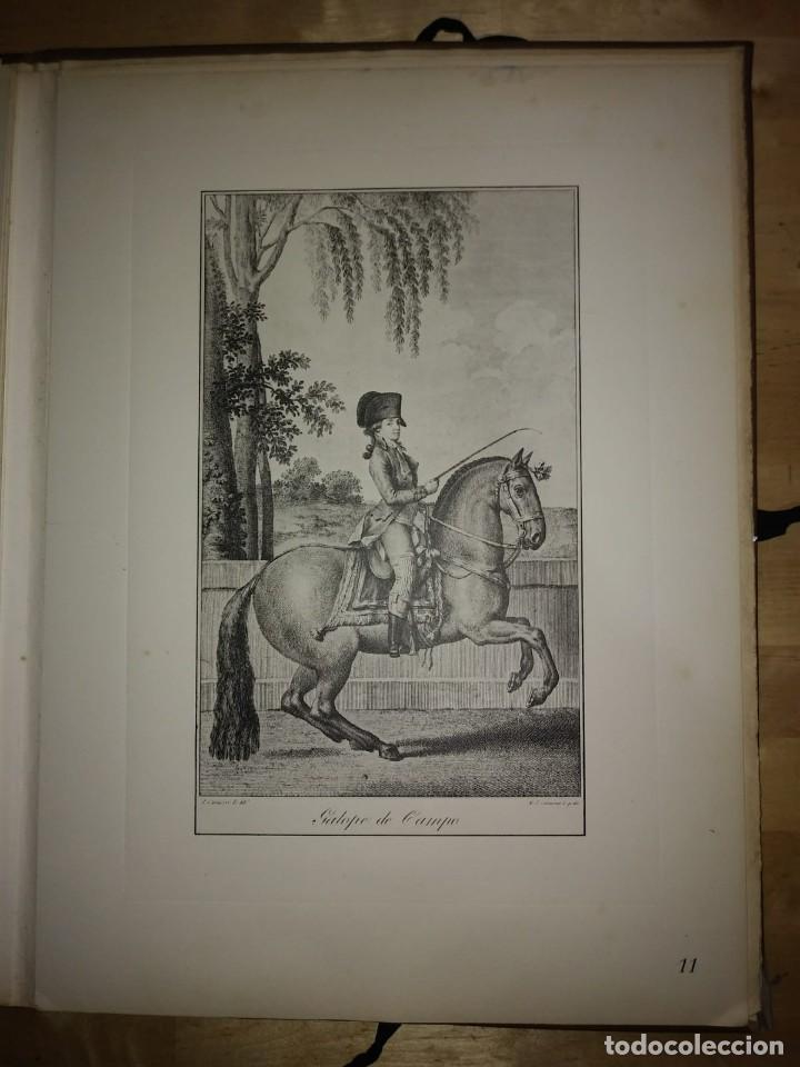 Libros de segunda mano: REAL PICADERO: Láminas de equitación grabadas en el siglo XVIII - hípica - caballos - equitación - Foto 34 - 117618115