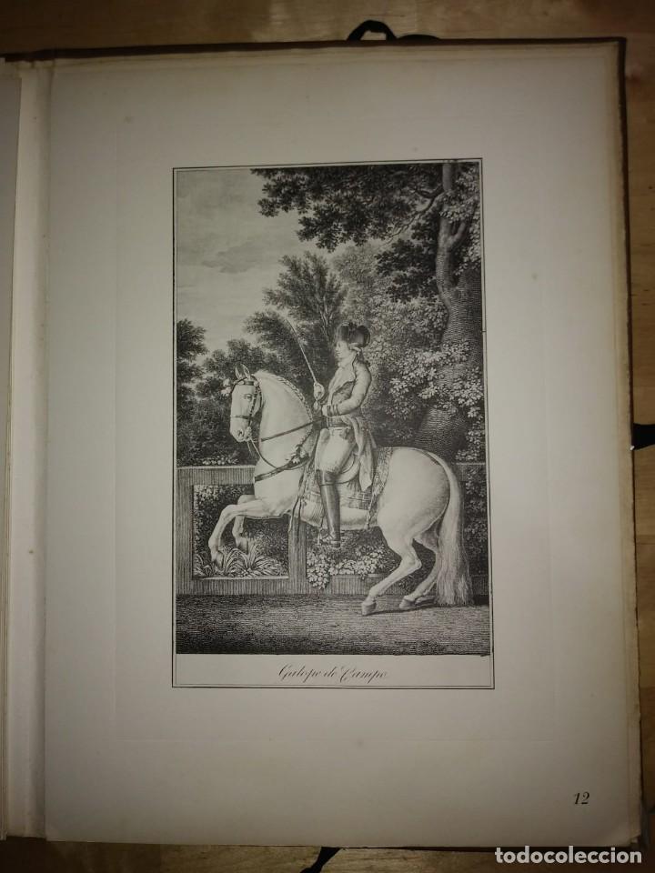 Libros de segunda mano: REAL PICADERO: Láminas de equitación grabadas en el siglo XVIII - hípica - caballos - equitación - Foto 35 - 117618115