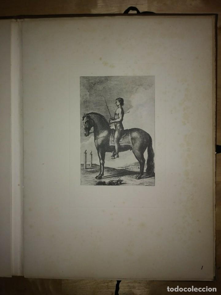 Libros de segunda mano: REAL PICADERO: Láminas de equitación grabadas en el siglo XVIII - hípica - caballos - equitación - Foto 36 - 117618115