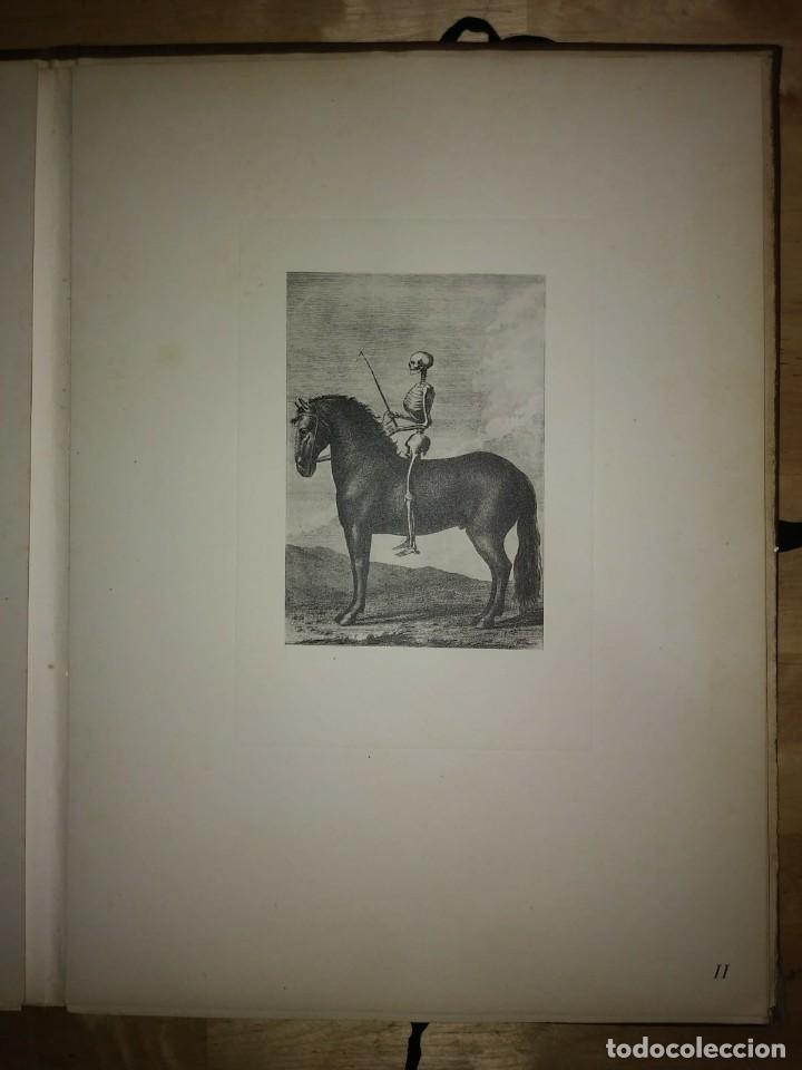 Libros de segunda mano: REAL PICADERO: Láminas de equitación grabadas en el siglo XVIII - hípica - caballos - equitación - Foto 37 - 117618115
