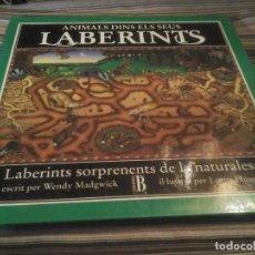 Libros de segunda mano: ANIMALS DINS ELS SEUS LABERINTS WENDY MADGWICK LORNA HUSSEY LAB. SORPRENENTS DE LA NATURALESA CATALÁ. Lote 117689211