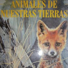 Libros de segunda mano: ANIMALES DE NUESTRAS TIERRAS BLANCALUZ GONZALEZ HEMMA JOVEN. Lote 117869283