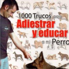 Libros de segunda mano: 1000 TRUCOS PARA ADIESTRAR Y EDUCAR A MI PERRO (JOSEFINA SEGOVIA). Lote 118027051