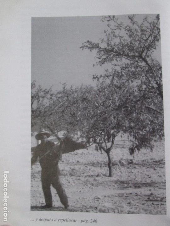 Libros de segunda mano: RELATOS CURIOSOS O ANECDOTAS ALTEANAS. FRANCISCO COELLO. DEDICADO POR EL AUTOR. 2003. - Foto 15 - 119297719