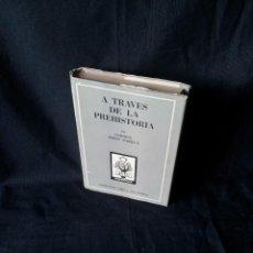 Libros de segunda mano: ENRIQUE PEREZ MARILUZ - A TRAVES DE LA PREHISTORIA - COLECCION ORO 11/12 - ATLANTIDA 2ª EDICION 1952. Lote 120971731