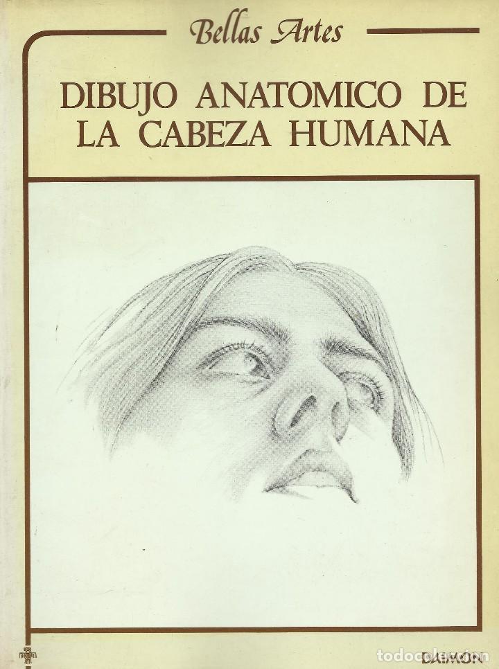 DIBUJO ANATÓMICO DE LA CABEZA HUMANA, L. GORDON (Libros de Segunda Mano - Bellas artes, ocio y coleccionismo - Otros)