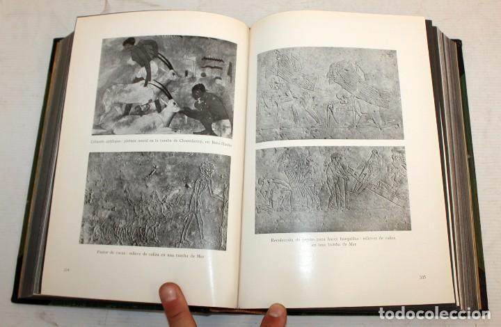 Libros de segunda mano: HISTORIA DEL ARTE LABOR - 14 TOMOS COMPLETA - MILES DE LÁMINAS - FOLIO - Foto 25 - 121296655