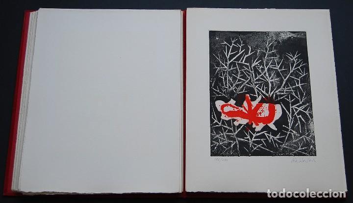 Libros de segunda mano: POEMAS DE LA ROSA. Poemas de Rainer Maria Rilke y grabados de artistas de primera linea. - Foto 15 - 121419523