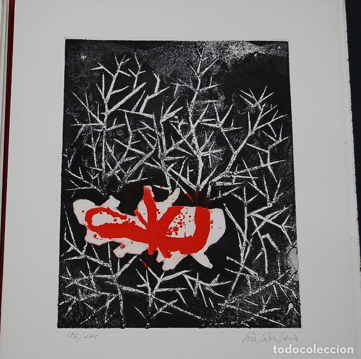 Libros de segunda mano: POEMAS DE LA ROSA. Poemas de Rainer Maria Rilke y grabados de artistas de primera linea. - Foto 16 - 121419523