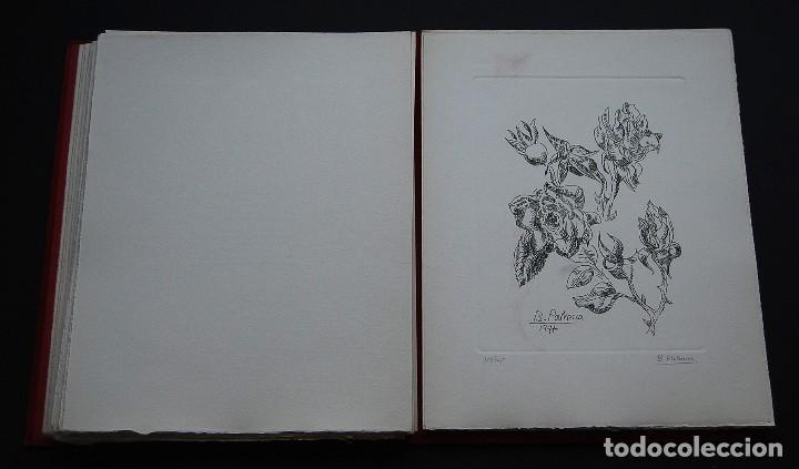Libros de segunda mano: POEMAS DE LA ROSA. Poemas de Rainer Maria Rilke y grabados de artistas de primera linea. - Foto 21 - 121419523