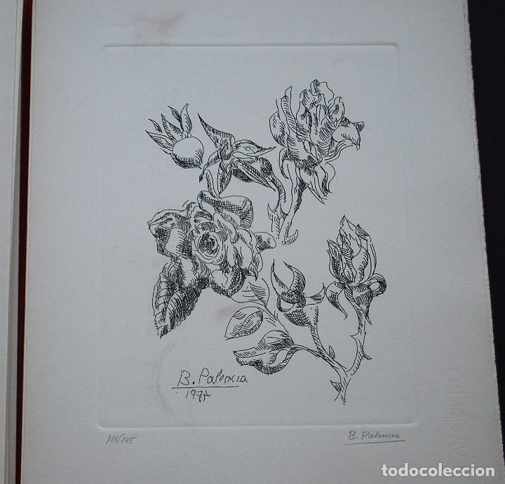 Libros de segunda mano: POEMAS DE LA ROSA. Poemas de Rainer Maria Rilke y grabados de artistas de primera linea. - Foto 22 - 121419523