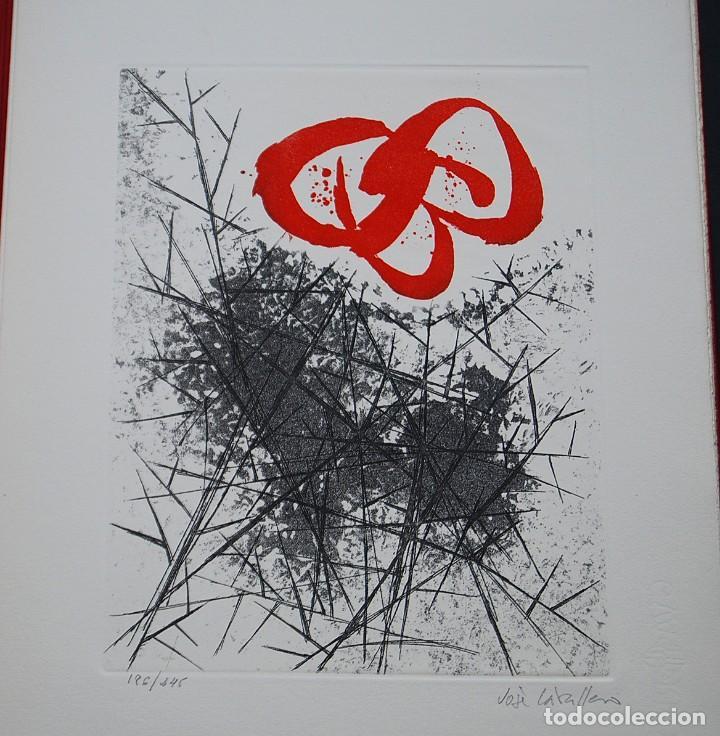 Libros de segunda mano: POEMAS DE LA ROSA. Poemas de Rainer Maria Rilke y grabados de artistas de primera linea. - Foto 33 - 121419523