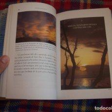 Libros de segunda mano: ELS NOMS DELS NIGULS A MALLORCA (MIGJORN I LLEVANT). MARIA BONET / MIQUEL GRIMALT. 1ª EDICIÓ 2004.. Lote 121874519