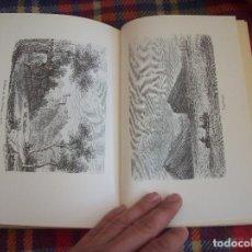 Libros de segunda mano: LA ISLA DE MALLORCA. RESEÑA DE UN VIAJE. H.A. PAGENSTECHER. EL DRAC EDITORIAL. 1ª EDICIÓ 1989. FOTOS. Lote 122156423