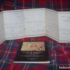 Libros de segunda mano: ELS REIS DE MALLORCA I EL SEU POBLE (1229-1349) .SA LLOTJA. 1983. ARBRE GENEALÒGIC DE LA DINASTIA.... Lote 122673535