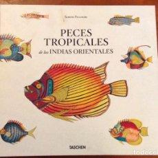 Libros de segunda mano: PECES TROPICALES DE LAS INDIAS ORIENTALES. THEODORE W. PIETSCH. TASCHEN. Lote 123206419
